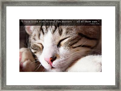 Zen Master Cat And Eckhart Tolle Quote Framed Print by Rico Besserdich