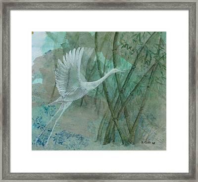 Zen Morning Framed Print by Sandy Clift
