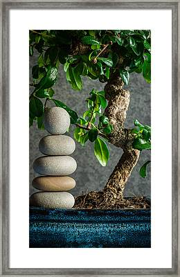 Zen Stones And Bonsai Tree II Framed Print by Marco Oliveira