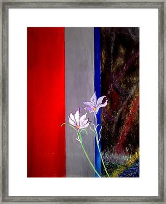 Zentastic Pair Framed Print by Rizwana Mundewadi