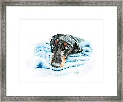 Framed Print featuring the drawing Zeus by Mike Ivey