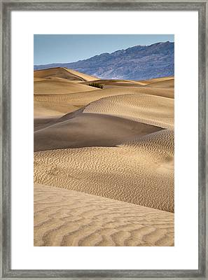 Zig Zag Framed Print by Mike McMurray