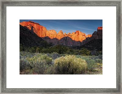 Zion At Dawn Framed Print