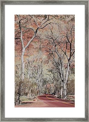 Zion At Kayenta Trail Framed Print by Viktor Savchenko