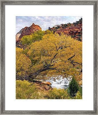 Zion Canyon Autumn Framed Print