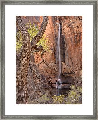 Zion Canyon Framed Print by Leland D Howard