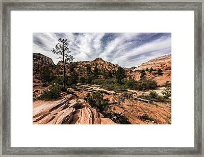 Zion Mountains 4c Framed Print by Don Risi