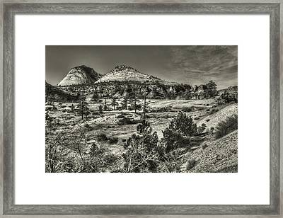 Zion National Park Along Rt 9 Framed Print