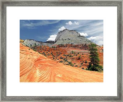 Zion National Park As A Storm Rolls In Framed Print by Christine Till