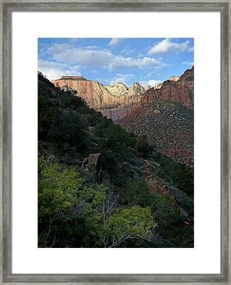 Zion National Park 20 Framed Print by Jeff Brunton