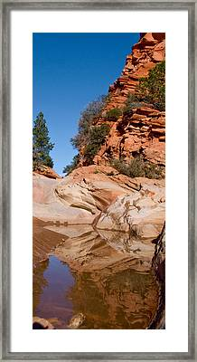 Zion Plateau Water Hole Framed Print by Edwin Voorhees