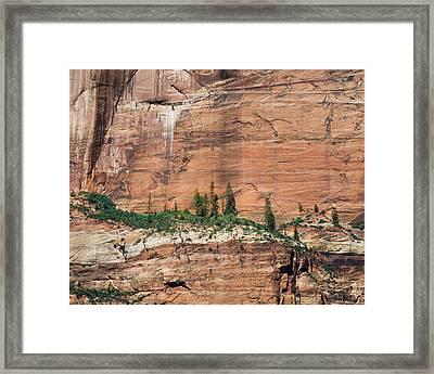 Zion Wall Framed Print