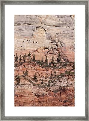 Zion Wall Framed Print by Viktor Savchenko