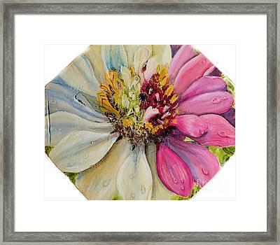 Zippy Zinnia Framed Print