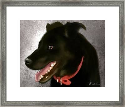 Zoey Framed Print