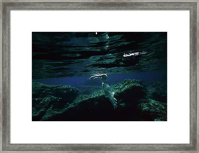 Zombie Mermaid Framed Print