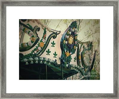Zoo Carousel Ma Framed Print