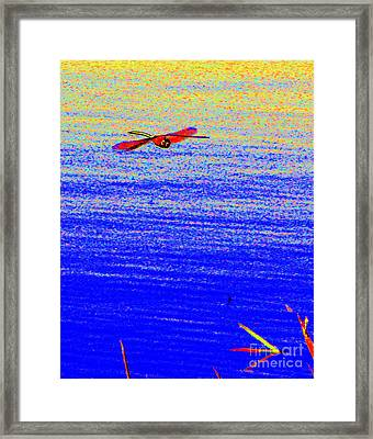 Zoom Framed Print by Priscilla Richardson