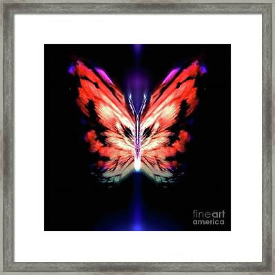 Zor Haidafeather Framed Print