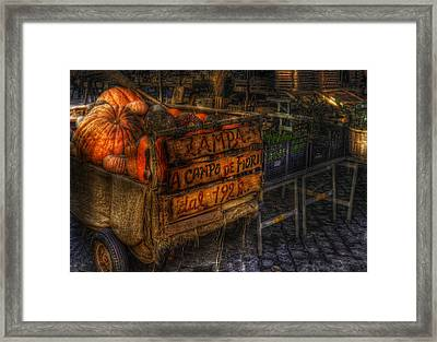 Zucca Framed Print by Brian Thomson