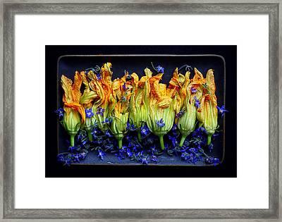 Zucchini Flowers Framed Print