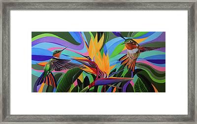 Zumbador Canela Framed Print