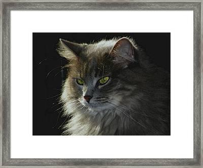 Zusje Framed Print by Martin Morehead