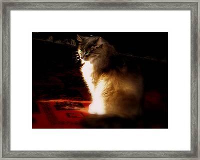 Zusje Sunbathing In The Light Framed Print by Martin Morehead