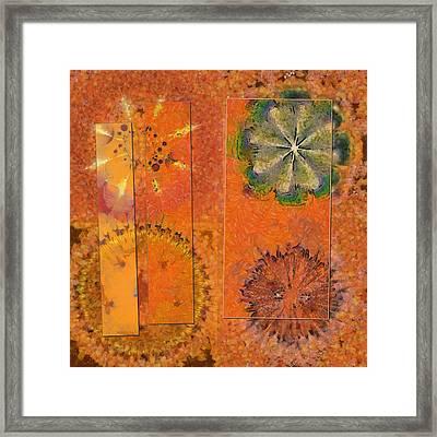 Zymase Harmony Flower  Id 16165-100704-37371 Framed Print