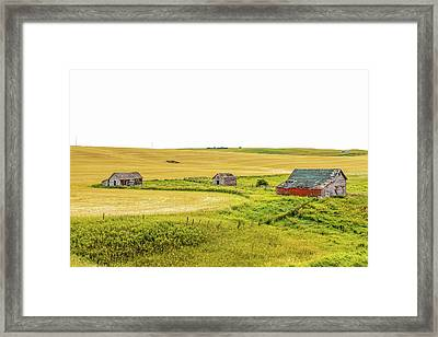 A Sign Of The Times, Run Diown Farm Out Buildings And Barns, Alb Framed Print