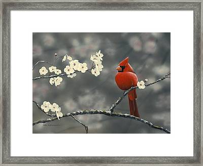 Framed Print featuring the painting Cardinal And Blossoms by Peter Mathios