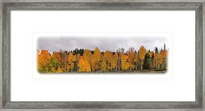 Cedar Mountain Top Framed Print