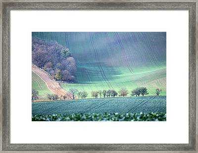 Autumn In South Moravia 1 Framed Print