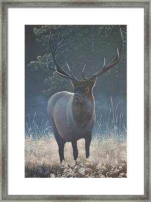 Framed Print featuring the painting First Light - Bull Elk by Peter Mathios
