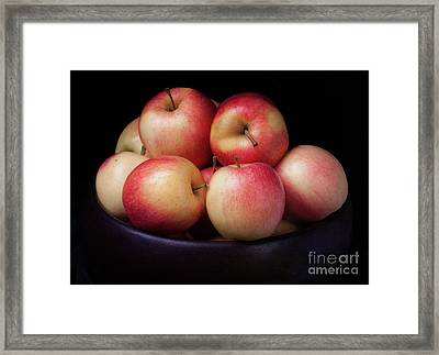 Framed Print featuring the photograph Gala Apples by Ann Jacobson