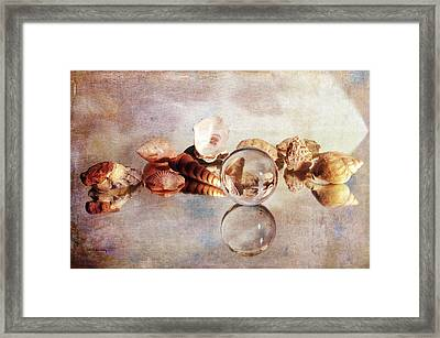 Framed Print featuring the photograph Gems From The Beach by Randi Grace Nilsberg