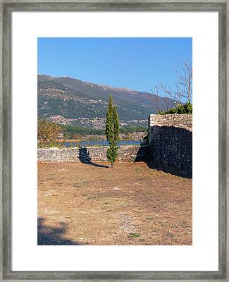 Lonely Tree Framed Print