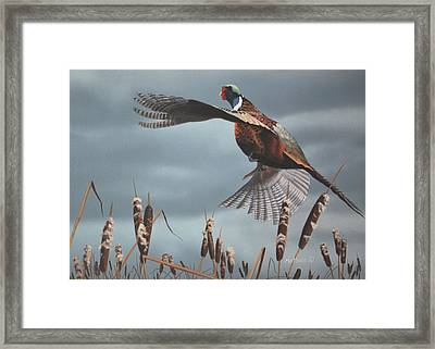 Framed Print featuring the painting Out Of The Cattails by Peter Mathios