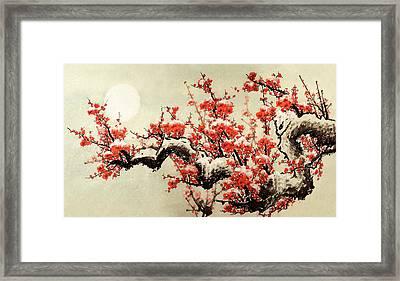 Plum Blossom Framed Print