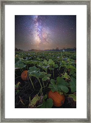 Framed Print featuring the photograph Pumpkin Patch  by Aaron J Groen