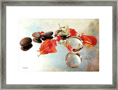 Framed Print featuring the photograph Seasons In A Bubble by Randi Grace Nilsberg