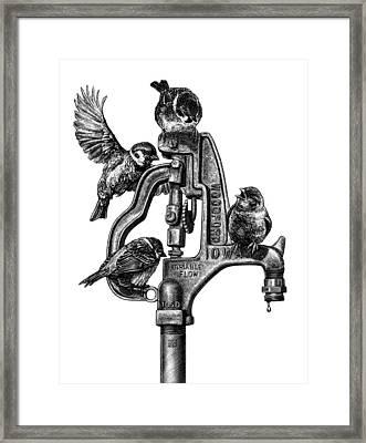Talk Around The Watercooler Framed Print