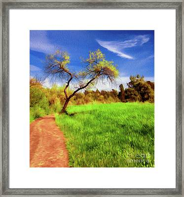 The Path That Lies Ahead Framed Print by Kenneth Montgomery