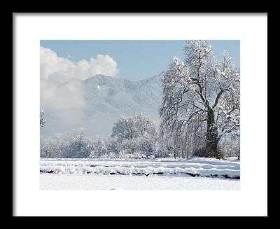 Snow Framed Prints