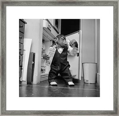 Thirsty Monkey Framed Print by Vecchio