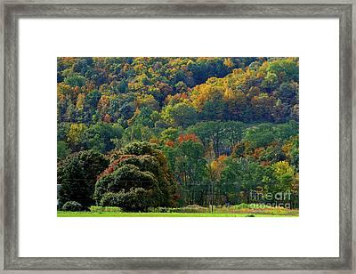10-12-2009img2941a Framed Print