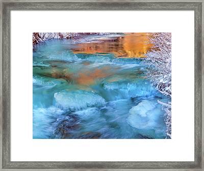 Color Of Winter Framed Print by Leland D Howard