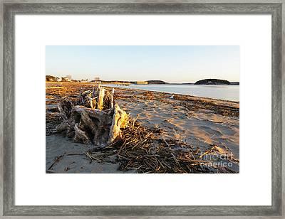Popham Beach State Park - Phippsburg Maine Usa Framed Print