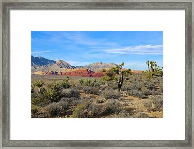 Red Rock Canyon National Conservation Area Framed Print