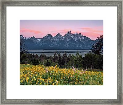Framed Print featuring the photograph Teton Spring by Leland D Howard